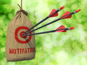 triple motivation bullseye - total coach - guy masterson - xcom inc - colorado